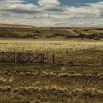 HNVLCUQ7PUEurUGpQG0zcvKTnUOjJUlDXf2jZb2pkh8 150x150 - Patagonia Inc. effettua il primo ordine di lana prodotta dagli allevatori di pecore nell'omonima regione argentina