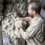 P9yzHIpBdxbA1dYk0JyssAbM1ISmlVina40NST2sKUE1 150x150 - Patagonia Inc. effettua il primo ordine di lana prodotta dagli allevatori di pecore nell'omonima regione argentina