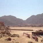 TRAIL RUNNING DESERTO DEL SINAI TEST NIKE FUELBAND ADIDAS ENERGY BOOST XBIONIC SOCKS XITANIT BANDANA TROPICALE AQABA DAHAB SHARM EL SHEIK 094 150x150 - #TRAILRUNNING Correndo nel deserto del Sinai: test Nike+ Fuelband, Adidas Energy Boost, Xbionic, Salomon