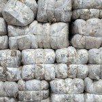hNmUsl4d3ZnxAGiXGVLwLa d2ucMtNSY1wQBb7IG19I 150x150 - Patagonia Inc. effettua il primo ordine di lana prodotta dagli allevatori di pecore nell'omonima regione argentina