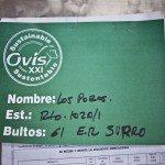 ncmcr4U bhTfwjK6IOzytkaDNzT ZuES0537U9jT7Mg 150x150 - Patagonia Inc. effettua il primo ordine di lana prodotta dagli allevatori di pecore nell'omonima regione argentina