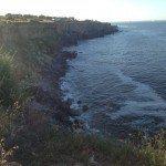 TRAIL RUNNING IN CASCAIS NEAR LISBOA Lisbona ATLANTIC OCEAN SEA INTERNATIONAL PRESENTATION OF NEW CITROEN C4 PICASSO RUN CORSA TEST WITH BROOKS PURE NIKE FUEL BAND XBIONIC SOCKS XBS PERFORMANCE SALOMON EXO 43 150x150 - Correre (TRAIL RUNNING) in Portogallo, un meraviglioso tracciato di 10km a Cascais vicino a Lisbona