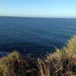 TRAIL RUNNING IN CASCAIS NEAR LISBOA Lisbona ATLANTIC OCEAN SEA INTERNATIONAL PRESENTATION OF NEW CITROEN C4 PICASSO RUN CORSA TEST WITH BROOKS PURE NIKE FUEL BAND XBIONIC SOCKS XBS PERFORMANCE SALOMON EXO 44 150x150 - Correre (TRAIL RUNNING) in Portogallo, un meraviglioso tracciato di 10km a Cascais vicino a Lisbona