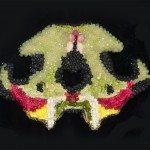Silbernagl Undergallery Presenta Play Dead di Alice Olimpia Attanasio 150x150 - Mostre d'arte contemporanea a Milano Silbernagl Undergallery Presenta Play Dead di Alice Olimpia Attanasio