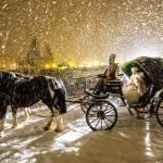 Carnevale Asburgico ph Paolo Bisti 150x150 - Madonna di Campiglio: un inverno mondiale!