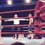 Italia Thunder boxe 2015 10 150x150 - Italia Thunder boxe 2015: 5-0 all'Argentina, Milano applaude, foto e video