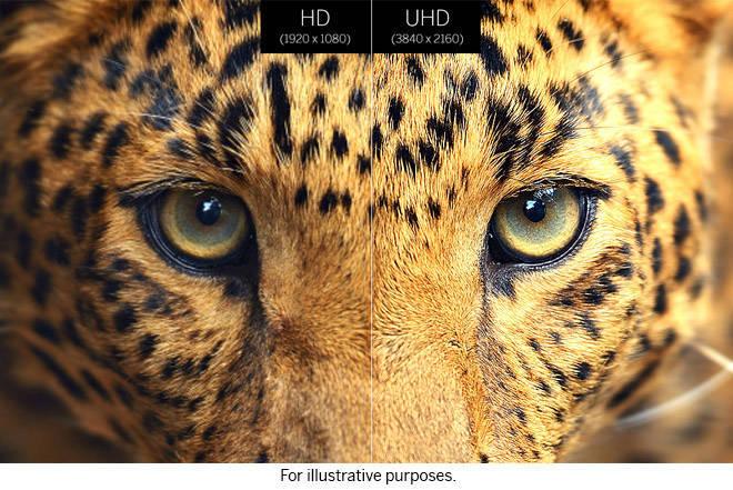 69f68c39 e195 4baa b3e8 43a4d3072ed3.jpg.w960 - Guida alle migliori memorie SDHC e microSD per i nostri video in 4K