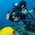 Crea scatti artistici con la macchina fotografica subacquea economica: guida completa