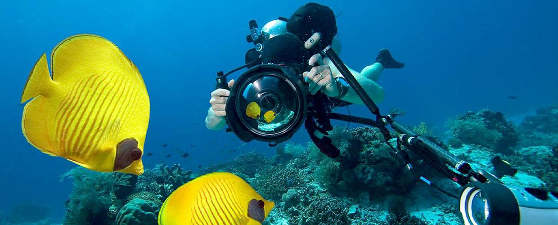 macchina fotografica subacquea economica - Crea scatti artistici con la macchina fotografica subacquea economica: guida completa