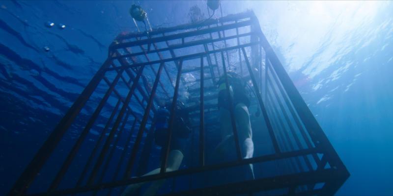 47 METRI – Terrore in fondo al mare nel Teaser Trailer Italiano Ufficiale
