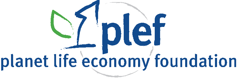 plef - Rigenerare i Territori e le PMI di territorio per rigenerare il Paese