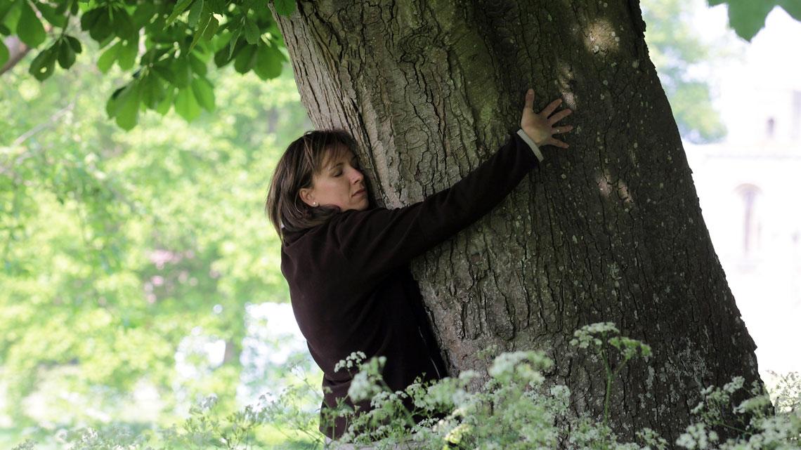giornata alberi - #unalberoè - Giornata Nazionale degli Alberi