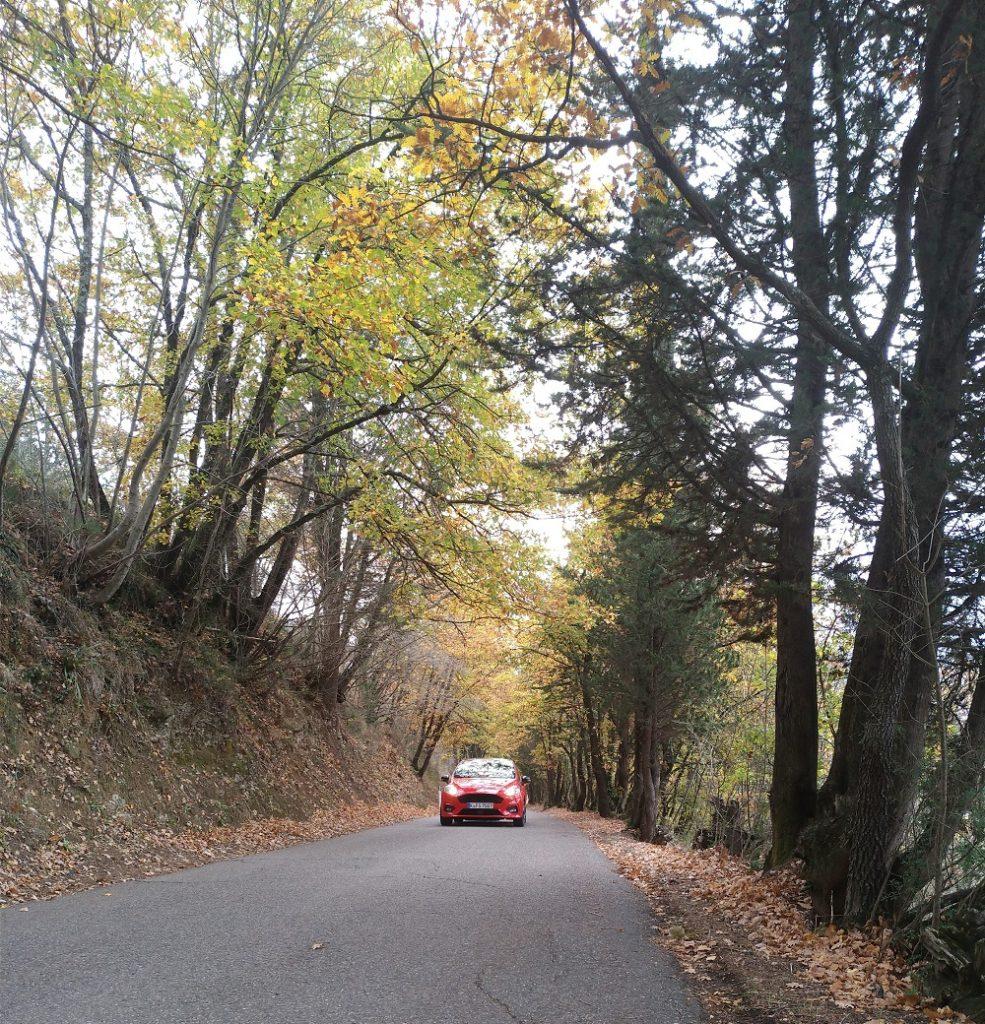 Ford Fiesta ST sulle colline toscane