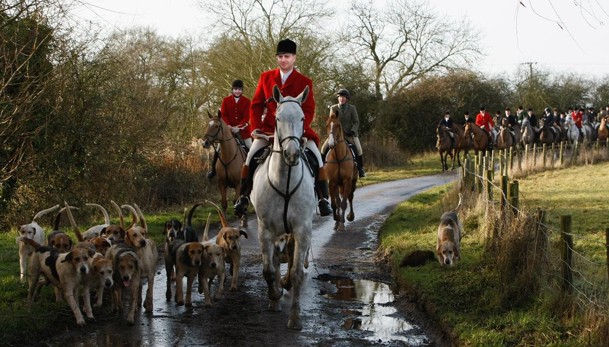 ▷ Theresa May contro la caccia alla volpe -