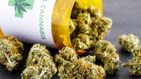 cannabis terapeutica shu 301537862 1600x900 - La cannabis terapeutica in Germania ha grande successo