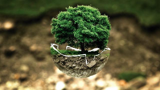 ecologia - Nuovi progetti per rendere ecologiche le criptovalute