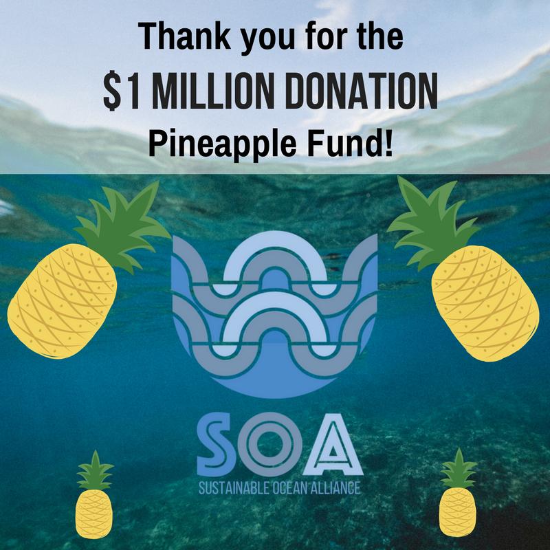 pineapple - Anonimo dona $ 86 milioni di Bitcoin in beneficenza