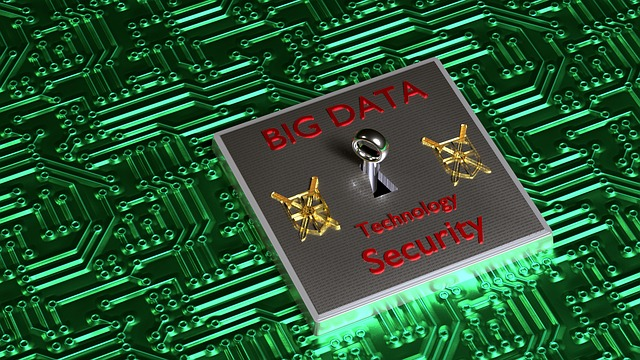bigdata 1423786 640 - I dati e la loro sicurezza: priorità per le aziende