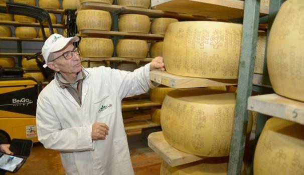 """parmigiano - Uno studio SDA Bocconi sul settore lattiero-caseario evidenzia il fattore cruciale della """"dimensione"""""""