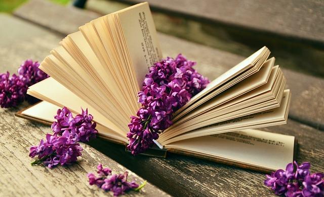 book 759873 640 - Cinque tecniche di rilassamento per chi non ama la meditazione
