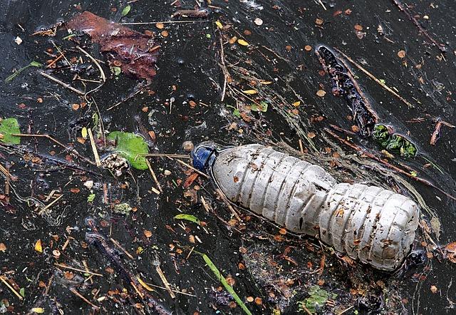 bottle 2349126 640 - Sea Defence Solutions riduce l'impatto dei rifiuti negli oceani