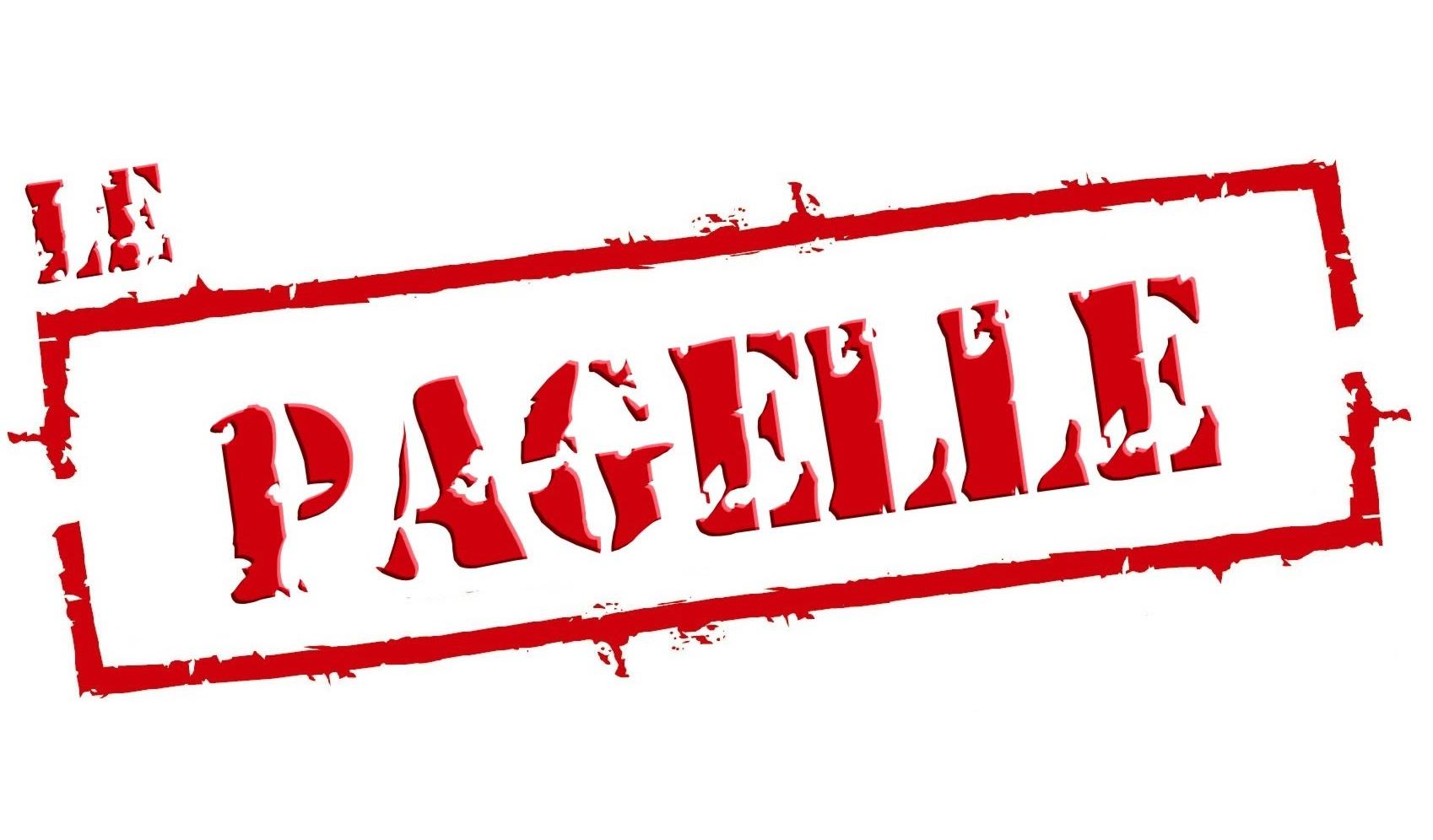 """pagelle - Le nuove imperdibili """"pagelle"""" di Federico Sagramoso"""