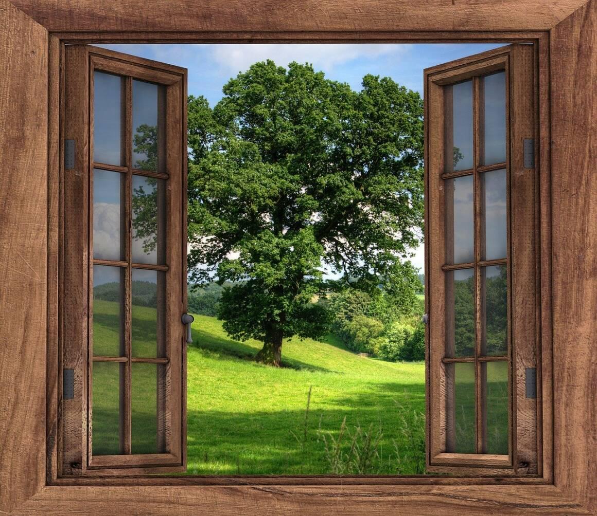 window 2994497 1280 1160x1004 - Basta spesso una finestra aperta ad impedire la diffusione di virus e altri agenti patogeni